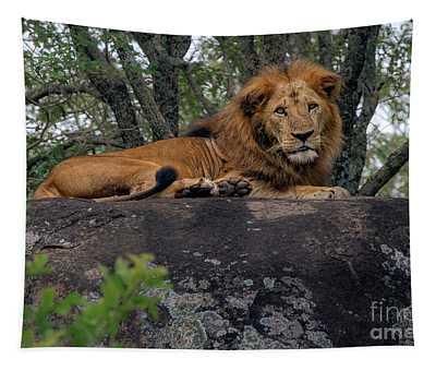 Lion Rocks Tapestry