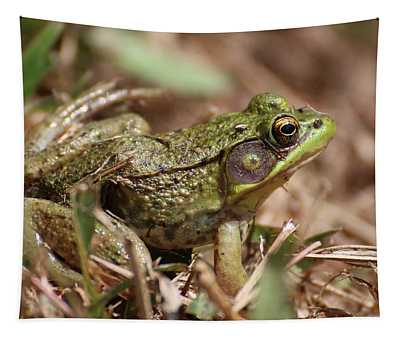 Little Green Frog Tapestry