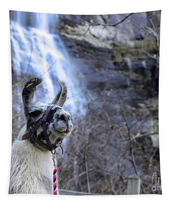 Llama Waterfall Tapestry