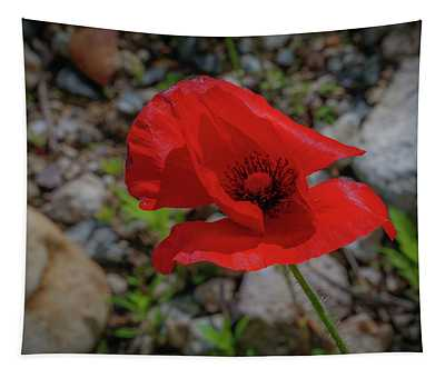 Lone Red Flower Tapestry
