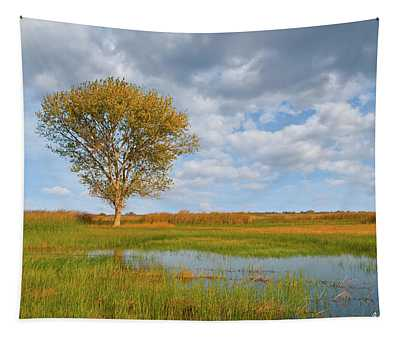 Lone Tree By A Wetland Tapestry