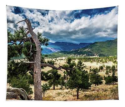 Lone Tree II Tapestry