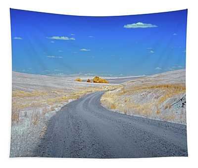 Long Road In Palouse Tapestry