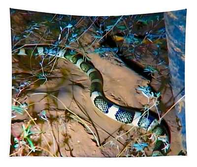 Tapestry featuring the photograph Longnosed Snake By A Desert Wash by Judy Kennedy