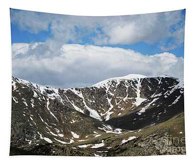 Longs Peak Estes Park Tapestry