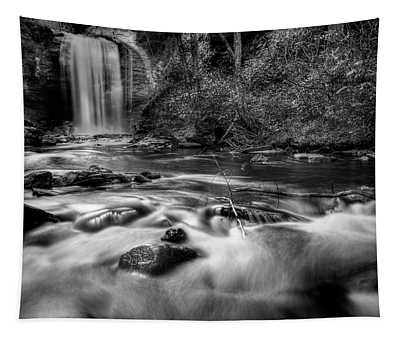 Looking Glass Falls In Black And White Tapestry
