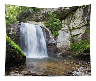 Looking Glass Falls In North Carolina 1 Tapestry