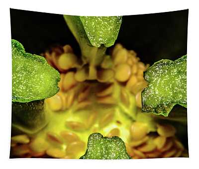 Looking Into A Pepper Tapestry