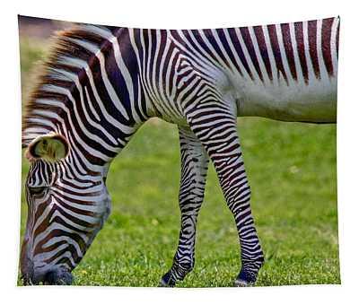 Love Zebras Tapestry