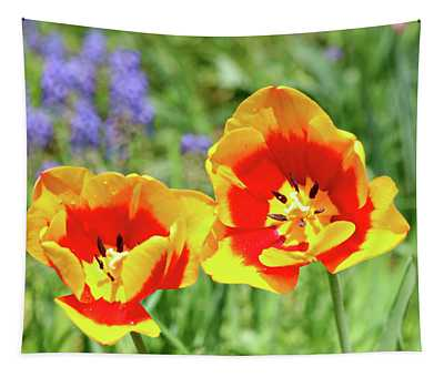 Lovely Yellow And Red Tulips Tapestry