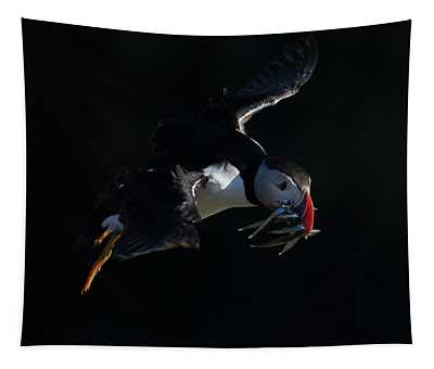 Low Key Puffin In Flight Tapestry