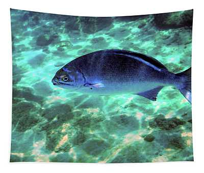 Lowfin Chb Tapestry