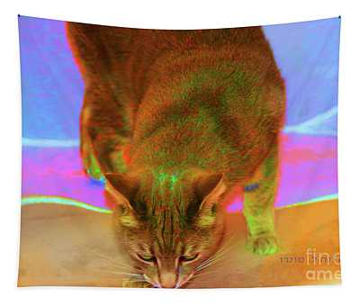 Lucius The Cute Cat Tapestry