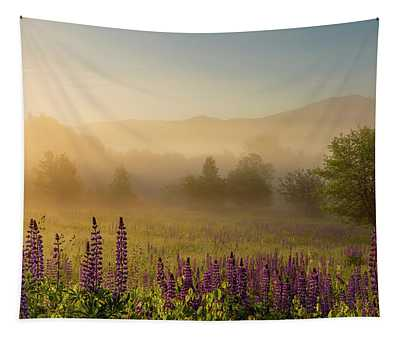 Lupine In The Fog, Sugar Hill, Nh Tapestry