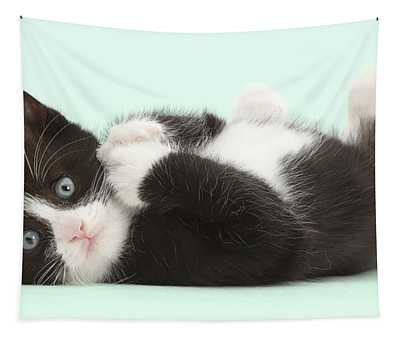 Lying Back In Black-and-white Tapestry