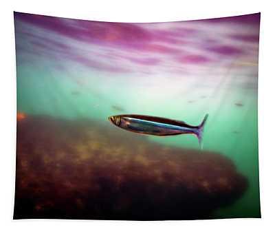 Mackerel In The Cove Tapestry