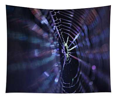 Macro Of A Spiders Web Captured At Night. Tapestry