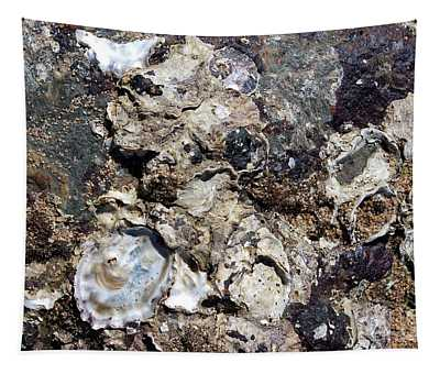 Macro Oyster Shell Cluster On The Beach Tapestry