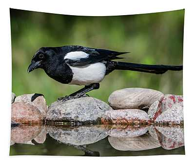 Magpie In Profile On The Rocks At The Pond Tapestry
