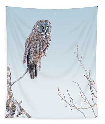 Majestic Great Gray Owl Tapestry