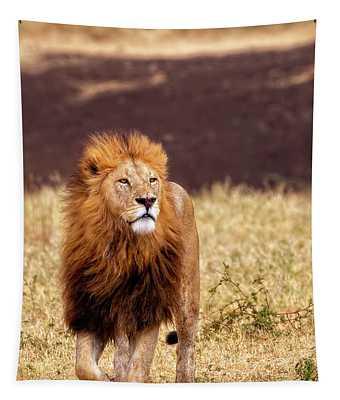 Majesty Tapestry