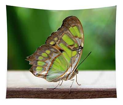 Malachite Butterfly Profile Tapestry