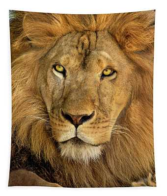 Male African Lion Portrait Wildlife Rescue Tapestry