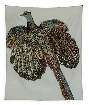 Male Pheasant, 1830 Tinted Engraving For Complete Works Of French Naturalist Comte De Buffon - 2 Tapestry