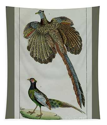 Male Pheasants, 1830 Tinted Engraving For Complete Works Of French Naturalist Comte De Buffon - 1 Tapestry