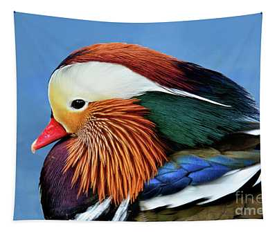 Mandarin Duck Portrait 1 Tapestry