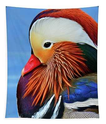 Mandarin Duck Portrait 3 Tapestry