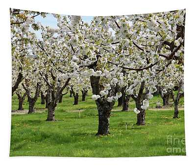 Many Cherry Blossoms In Spring Orchard Tapestry