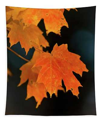 Maple-1 Tapestry