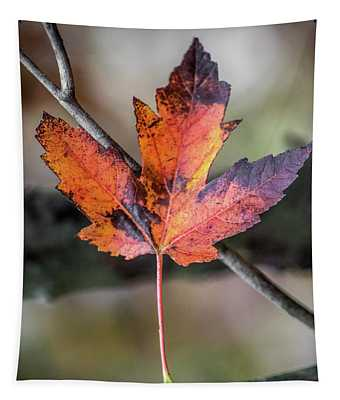 Maple 1 Tapestry