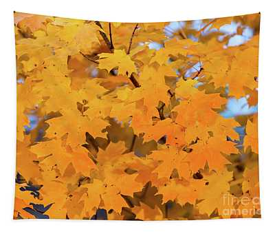 Maple-2 Tapestry