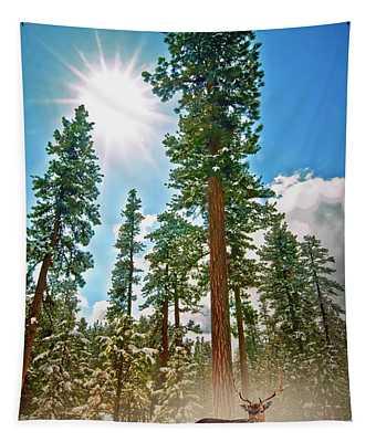 Central Oregon Digital Art Wall Tapestries