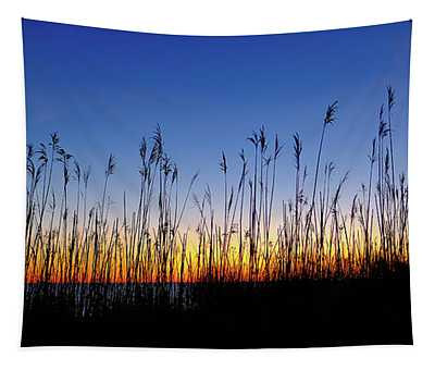 Marsh Grass Silhouette  Tapestry
