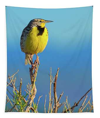 Tapestry featuring the photograph Meadowlark by John De Bord
