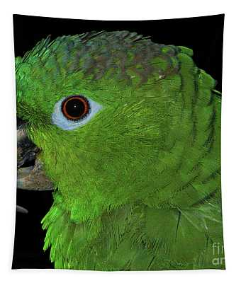 Mealy Amazon Tapestry