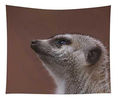 Meerkat  Tapestry