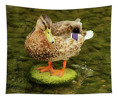 M'i Pad Tapestry