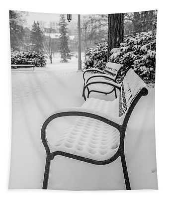 Michigan State University Bench In Winter  Tapestry
