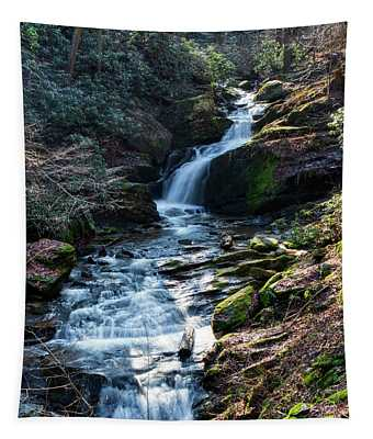 Mill Creek Falls  Tapestry