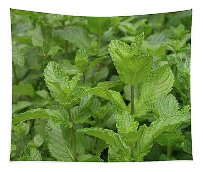 Minty Fresh Tapestry