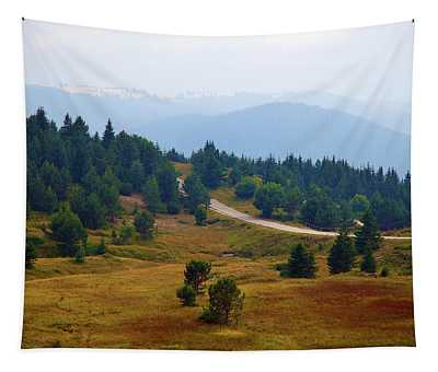 Misty Afternoon Tapestry