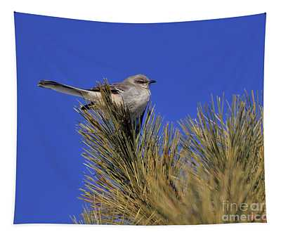 Mockingbird In White Pine Tapestry