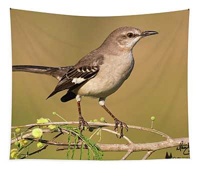 Mockingbird Up Close Tapestry