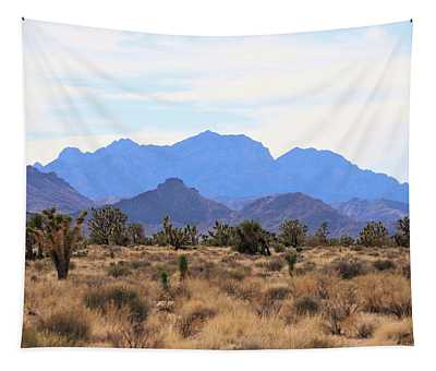 Mojave Tapestry