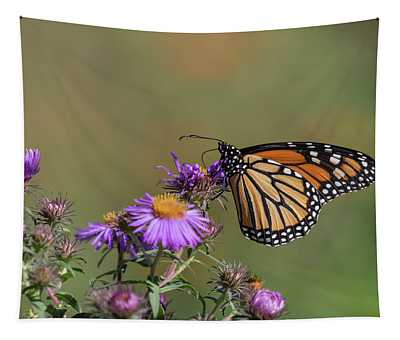Monarch 2018-31 Tapestry