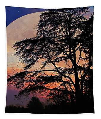 Moon Shadow Tapestry